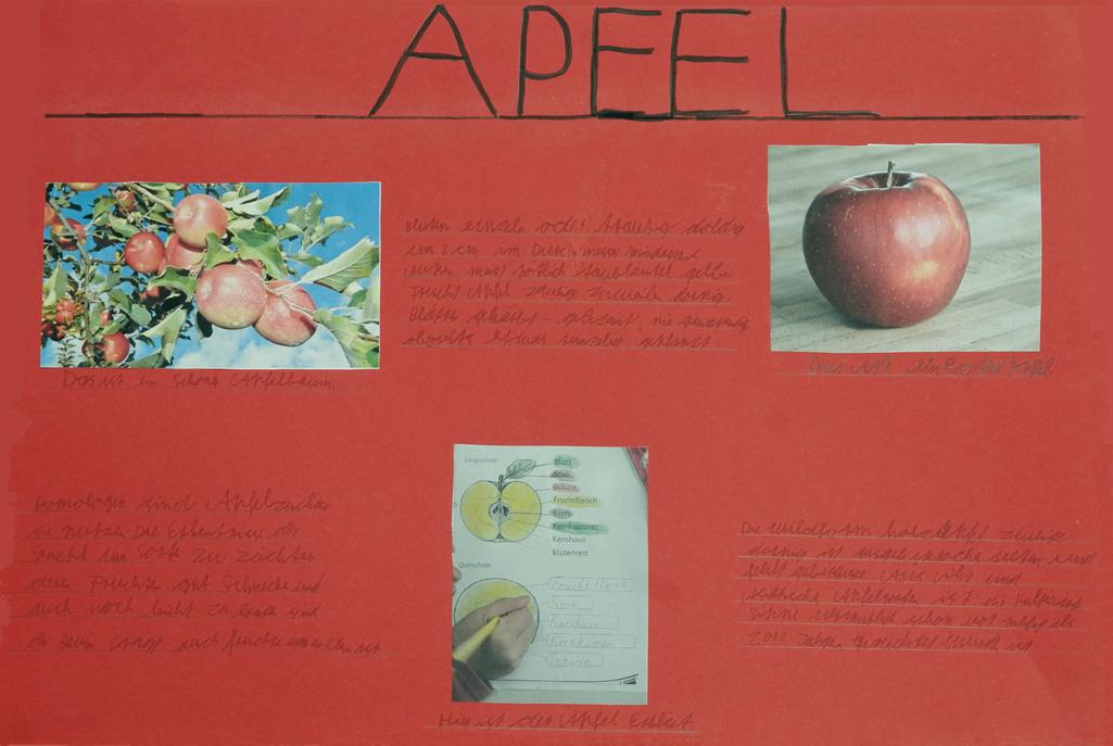 Apfel Collage